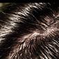 髪について